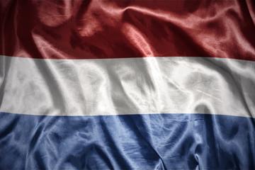 shining  dutch flag