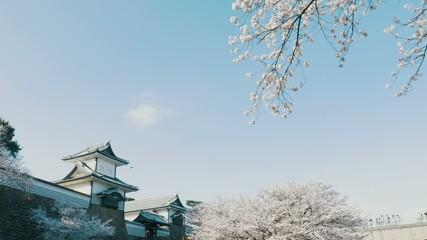 金沢城石川門春景色