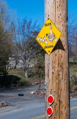 Attention! Duck crossing road sign