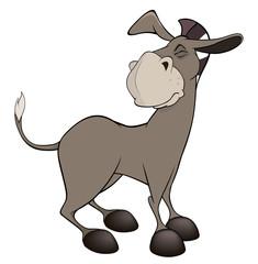 A little burro. Cartoon