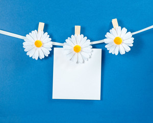 Chamomile flower clothespins with paper on blue background