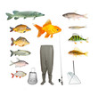 Great collection of isolated objects on fishing theme. - 81768427