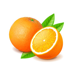 Orange and slice isolated on white vector