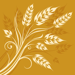 Stylized ears of wheat on yellow background, vector illustration