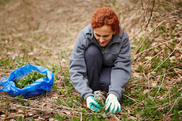 Woman picking nettle leaves
