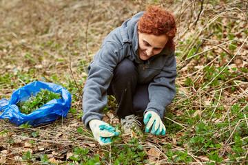 Woman picking nettle leaves