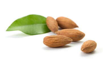 almonds with green leaves