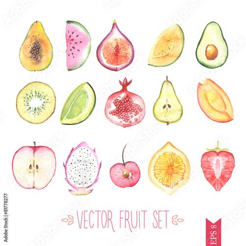 Watercolor vector fruit set