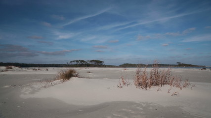 Cherry Grove Beach landscape in winter