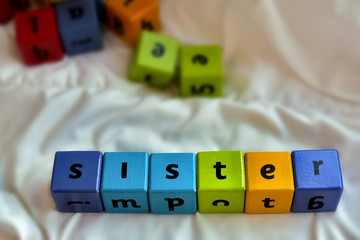 Kids blocks sister