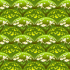 Pattern with camomiles field.