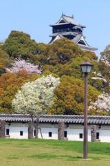 奉行丸から見る春の熊本城