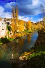 River Tajo at Trillo in autumn