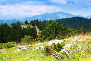 Pyrenees mountains landscape in summer