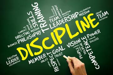 DISCIPLINE word cloud, business concept