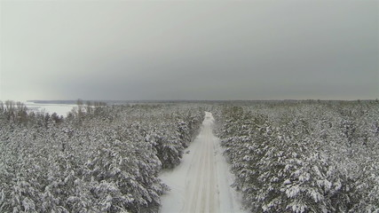 Winter forest with  empty road in gloomy weather. Aerial