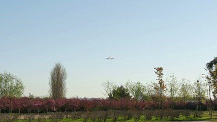 Jet plane Airbus A320 approaching landing