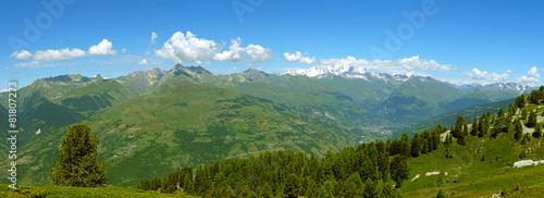 Panorama sur les Alpes © Gamut