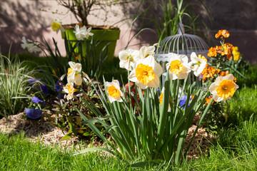 Fleur et Décoration de Pâques