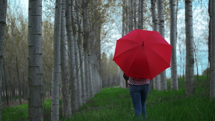 Woman with Red Umbrella Walking Away From the Camera in Park