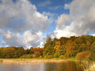Sunny autumn landscape with lake