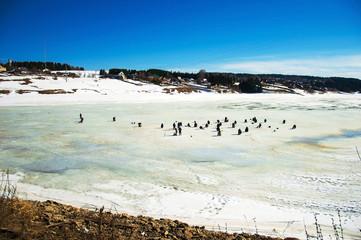 Рыбаки сидят на льду на реке