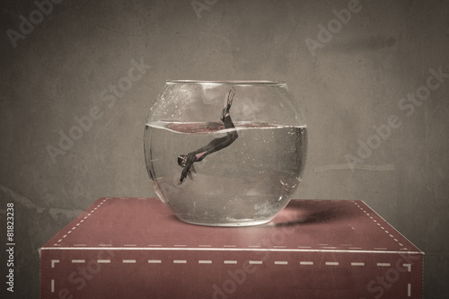immersion in a fish bowl - 81823238