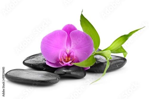 Foto op Plexiglas Orchidee zen stones