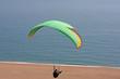 paraglider - 81825200