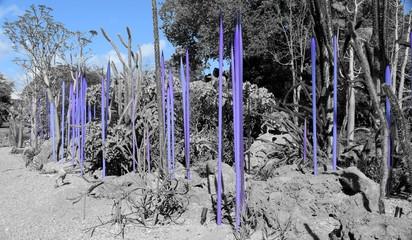 Nature Art in Blue