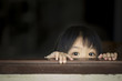 Asian baby behind the windows