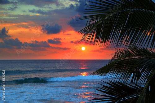 Tuinposter Strand beautiful sea sunset and palm leaves