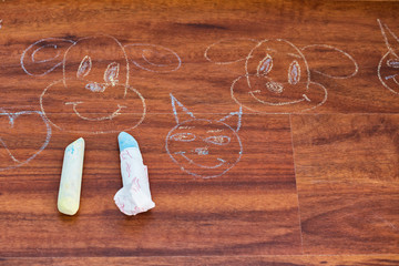 Cats and dogs drawings with chalk on the parquet