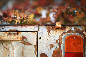 Old rusty car converted into a container of kitchen garden.