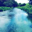 Spring water - 81834280