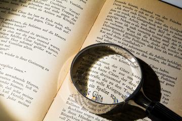 Buch mit Lupe