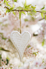 wooden heart in Spring with blossom