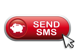 SEND SMS ICON