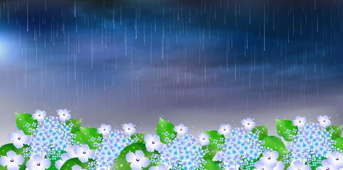 あじさい 梅雨 背景