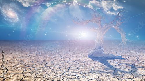 Delightful desert scene with light - 81841295