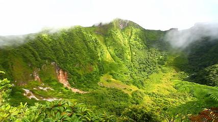 Saint Kitts Rainforest Landscape