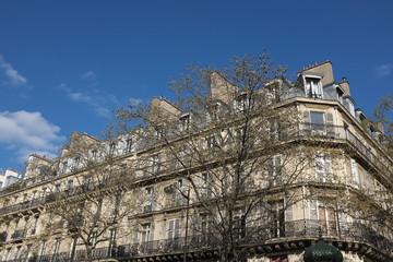 Immeuble de pierre blanc derrière des arbres, ciel bleu, Paris