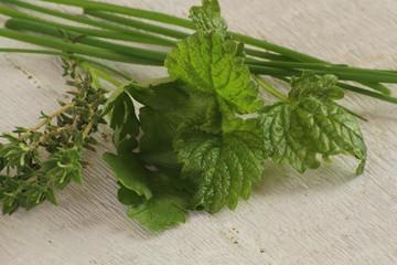 herbes aromatiques 19042015