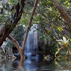 Waterfall in a lush rainforest