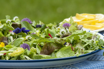 garden salad with eatable flowers, The Netherlands