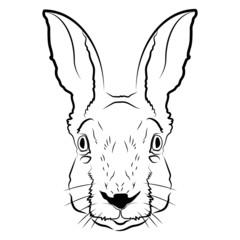 Rabbit head logo or icon in white.