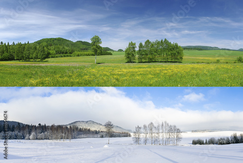 Leinwanddruck Bild Winter and summer