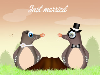 moles couple