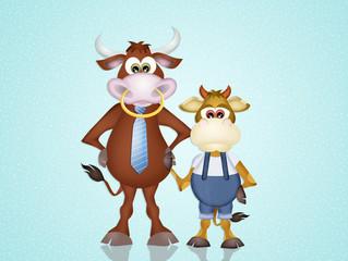 dad cow