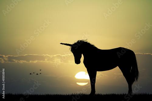 Unicorn silhouette - 81858846